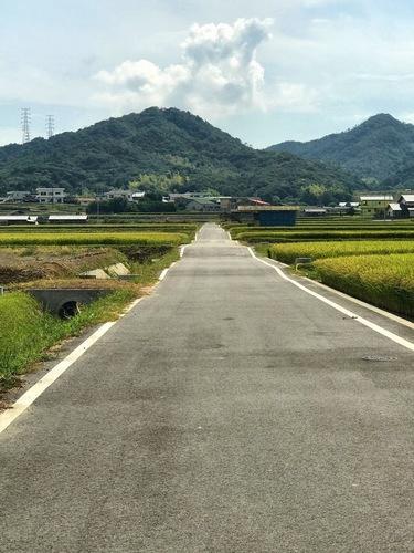 ガタガタ道.jpg