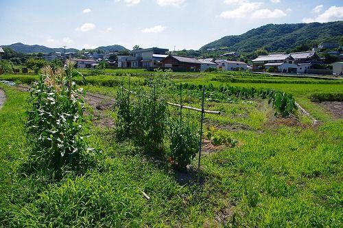 s-大森谷9.jpg