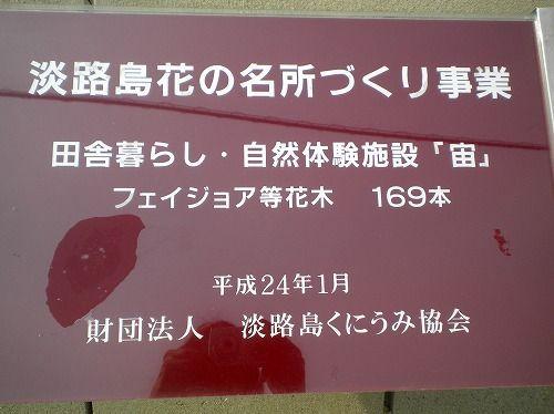 s-花の名所12.jpg