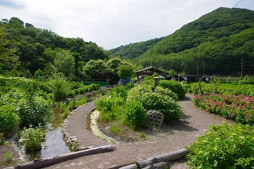 s-花山水11.jpg