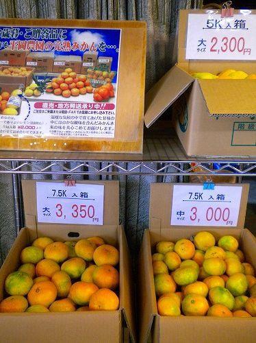s-平岡農園9.jpg