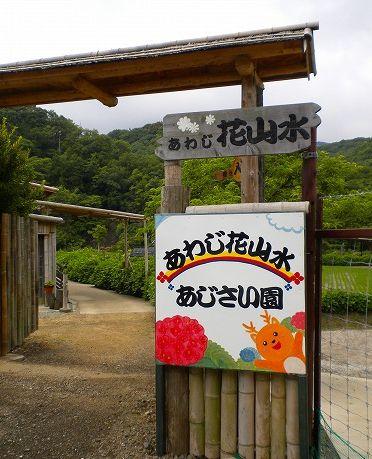 s-花山水14.jpg