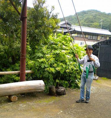 s-花山水4.jpg